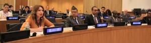 ВЕЛИЧКО В ООН
